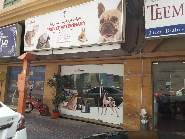 HiDubai-business-provet-veterinary-animals-pets-plants-pet-clinics-vets-hor-al-anz-east-dubai-2